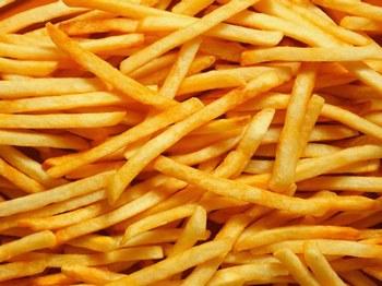 graisse de canard oie frites friture