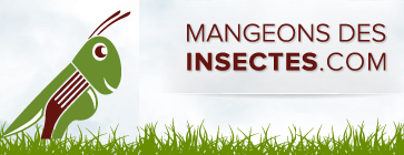 mangeons insectes